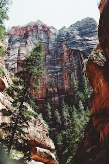 Hermoso tiro de ángulo bajo de un acantilado en el parque nacional zion durante el día