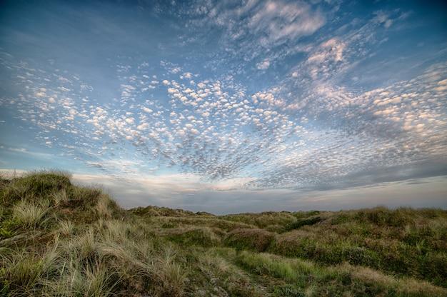 Hermoso tiro un campo en una colina bajo el cielo nublado