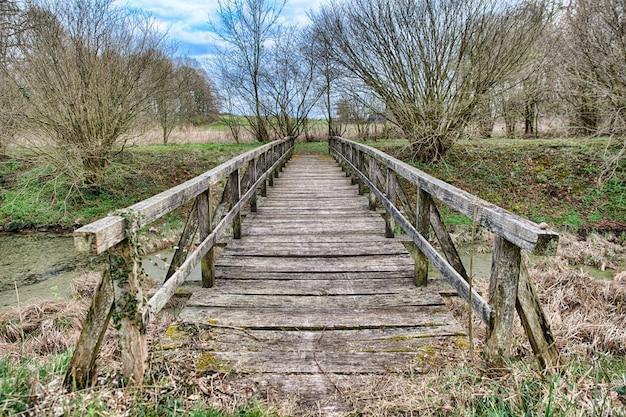Hermoso tiro de un puente de madera en el campo con árboles secos en otoño