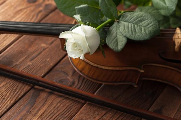 Hermoso violín con una rosa