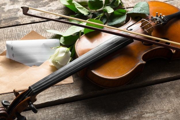 Hermoso violín