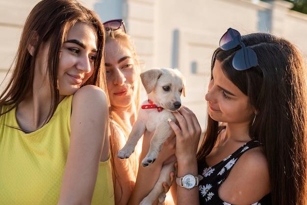 Hermosos amigos jugando con perro lindo