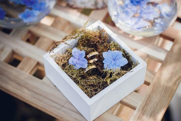 Hermosos anillos de boda en cajas de madera blancas.