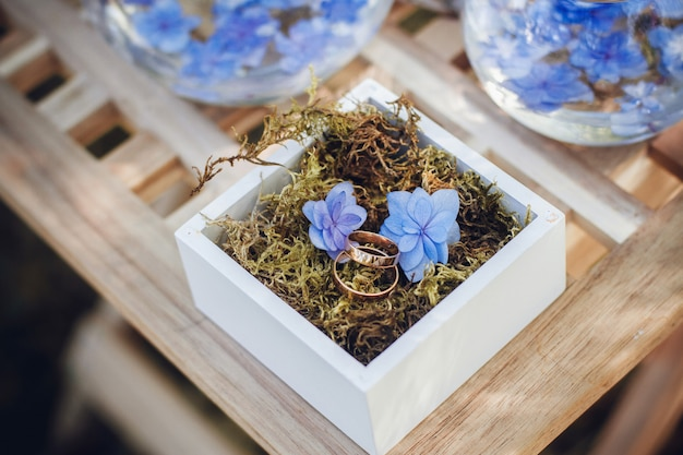 Hermosos anillos de boda en cajas de madera.