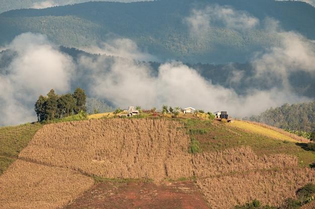 Hermosos paisajes en altas montañas, valles de arroz y parcelas agrícolas