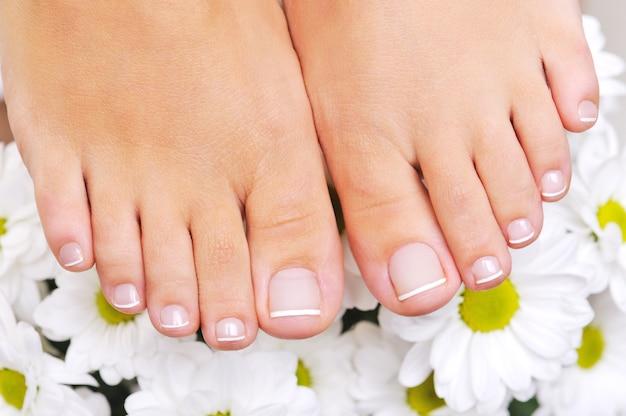Hermosos pies femeninos bien cuidados con la pedicura francesa y flores en el fondo