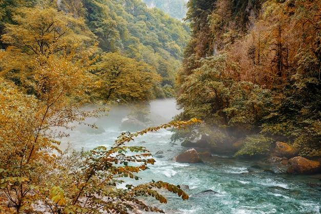 Hermosos ríos de montaña de color azul brillante en las montañas de abjasia en un día de otoño