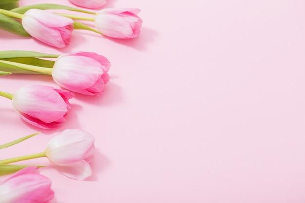Hermosos tulipanes rosados en mesa rosa