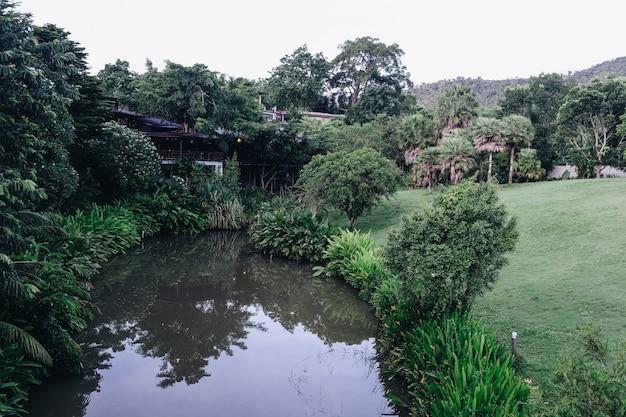 Hermosos valles suan phueng montaña en temporada de lluvias, tailandia