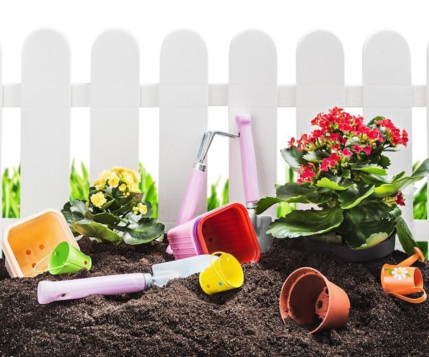 Herramientas de jardín en suelo aislado en blanco