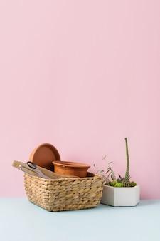 Herramientas de jardinería doméstica sobre fondo azul y rosa. trabajo doméstico de primavera. foto de alta calidad