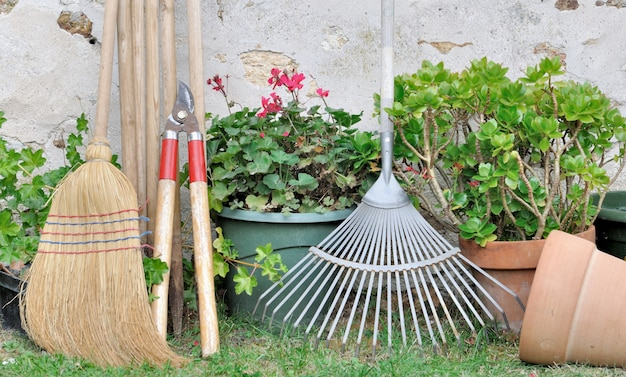 Herramientas de jardinería en el jardín