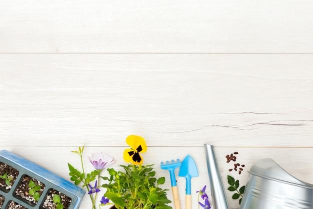 Herramientas de jardinería laicos planos y planta sobre fondo de madera con espacio de copia