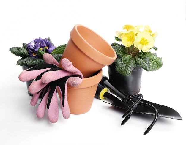 Herramientas de jardinería y maceta aislado