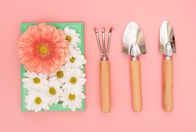 Herramientas de jardinería con margaritas y flores de gerbera.