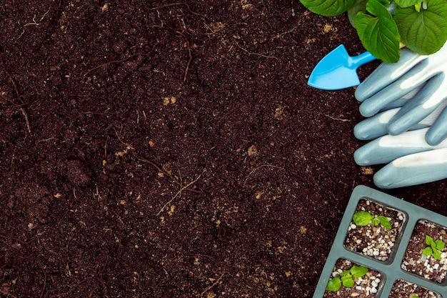 Herramientas de jardinería planas y plantas en el suelo con espacio de copia