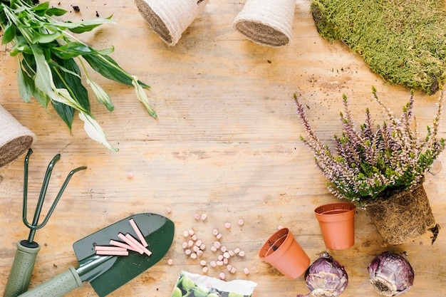 Herramientas de jardinería; planta en maceta; césped; cebolla y semillas sobre tabla de madera.