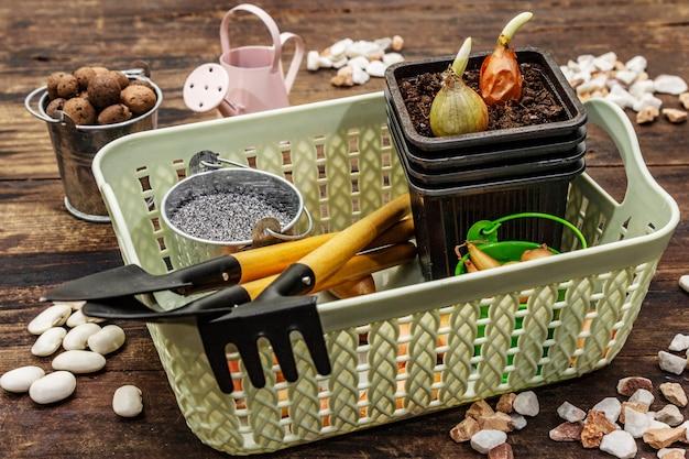 Herramientas de jardinería y plantación de primavera.