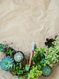 Herramientas de jardinería con plantas en macetas en vista superior de papel artesanal arrugado