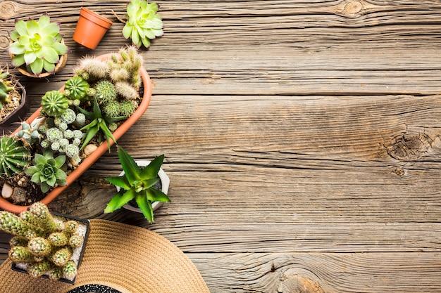 Herramientas de jardinería sobre suelo de madera vista desde arriba