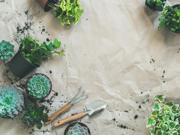 Herramientas de jardinería con suculentas y hiedra en macetas sobre papel artesanal.