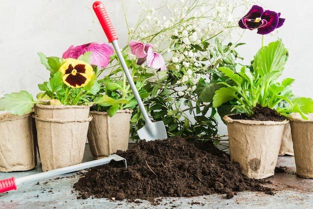 Herramientas de jardinería en el suelo con plantas de turba en maceta.