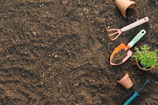 Herramientas y macetas con plantas en el suelo.
