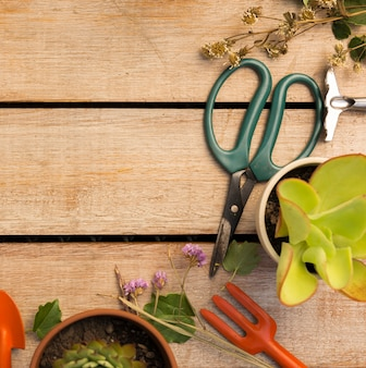 Herramientas y plantas en mesa de madera