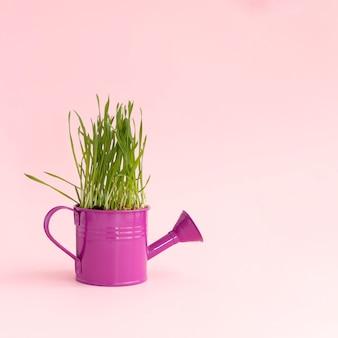 La hierba crece en un jarrón estilizado como una regadera.