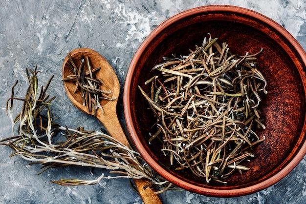 Hierba de especias de romero