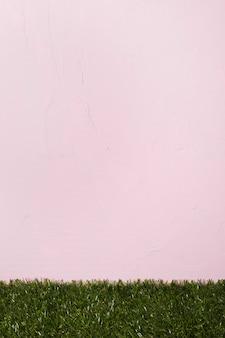 Hierba fresca sobre fondo rosa