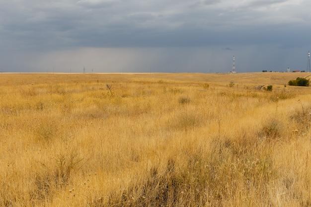 Hierba seca en la estepa, paisaje desértico, kazajstán,