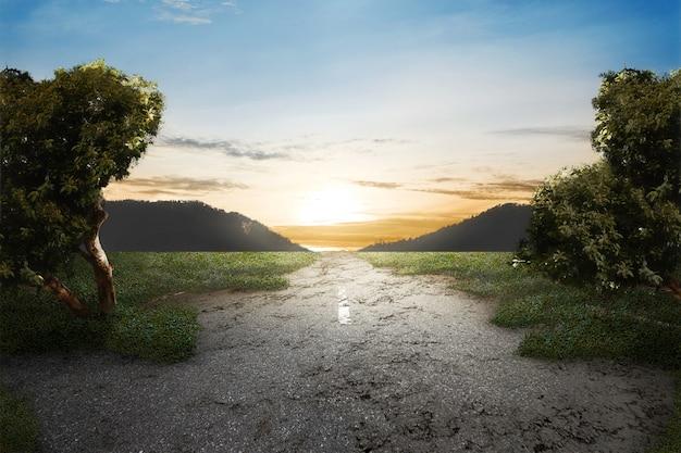 Hierba verde en camino abandonado