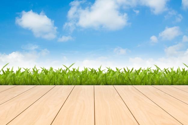 Hierba verde de primavera fresca con cielo azul