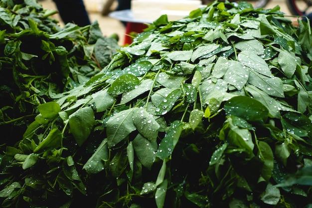 Hierbas asiáticas en el mercado