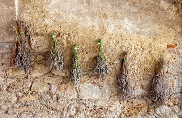 Las hierbas y flores secas cuelgan del estiramiento y secado al sol suspendido de la pared.