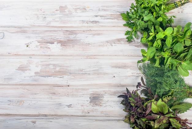 Hierbas frescas picantes, eneldo, albahaca, perejil, menta