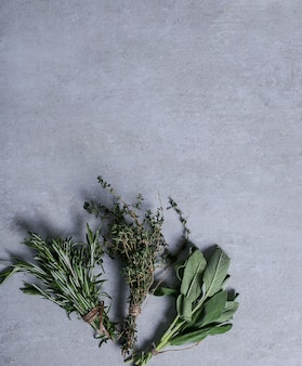 Hierbas sobre fondo gris