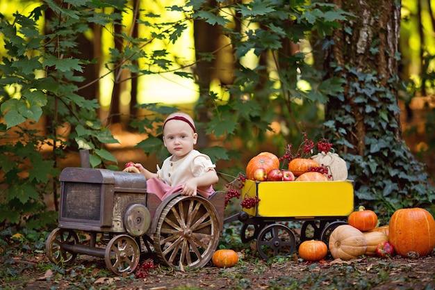 Hijita en un tractor con calabazas
