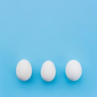 Hilera de huevos blancos