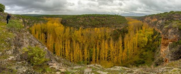 Hoces del río duratón en otoño, álamos amarillos