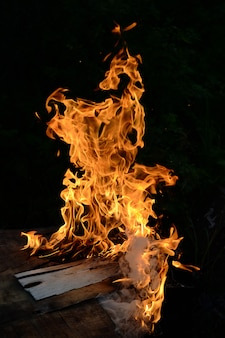 Hoguera y fuego de la casa en la noche.