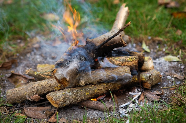 Hoguera, leña de cerca. fuego ardiente de troncos apilados