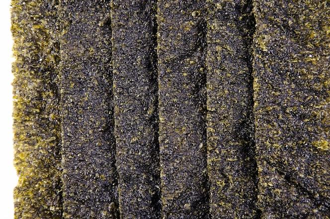 Hoja de algas marinas