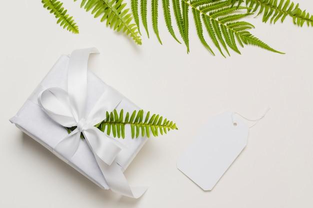 Hoja de helecho en caja de regalo blanca con etiqueta sobre fondo liso