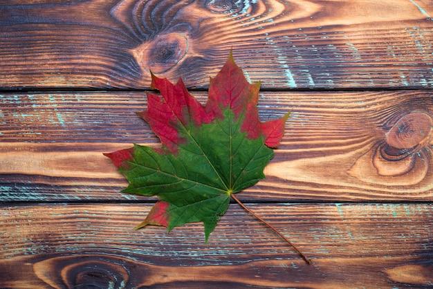 Una hoja de otoño de arce verde y rojo se encuentra en una vista superior de fondo de madera vintage concepto estacional.