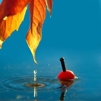Hoja de otoño y un flotador de pesca en el otoño en un embalse