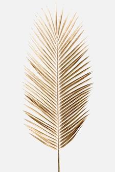 Hoja de palmera areca pintada en oro sobre un fondo blanco roto