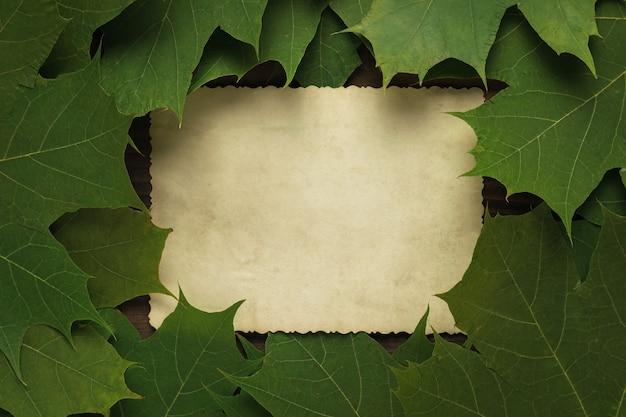 Una hoja de papel antiguo en hojas otoñales amarillas y rojas. espacio para el texto. fondo de otoño. endecha plana.