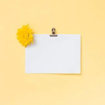 Hoja de papel en blanco con flor amarilla